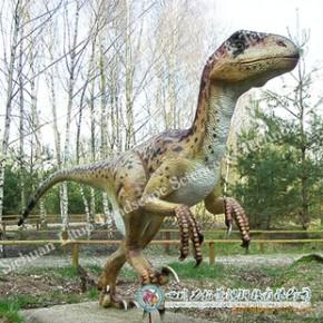 專業供應恐龍博物館展覽陳列用恐龍