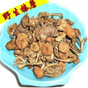 野生榛蘑2斤起批供應綠色菌類 鮮味蘑菇東北無根一等貨
