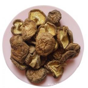 東北香菇 特等無根2斤起批長白山本地蘑菇 防病抗病提高免疫