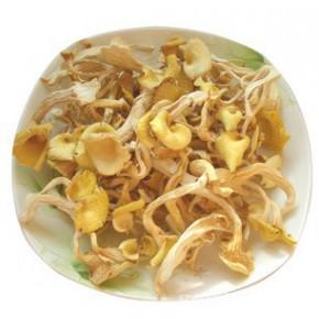 東北榆黃蘑2斤起批 當年新貨 野生綠色干蘑菇無污染顏色鮮黃