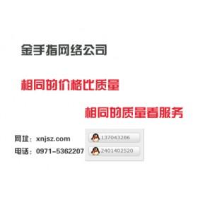 西宁金手指网络科技有限公司