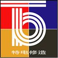 重庆特盟电机有限责任公司