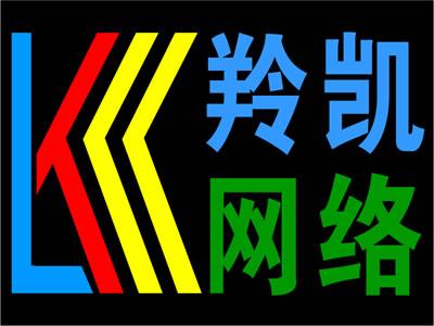 上海羚凯网络科技有限公司