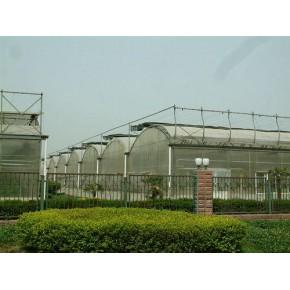 壽光愛農專業建設冬暖式蔬菜大棚山東連棟溫室壽光蔬菜大棚