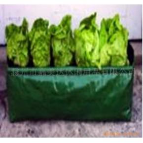 批發供應PE種植袋 pe