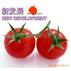 2010年新疆产220L桶装28-30%番茄酱