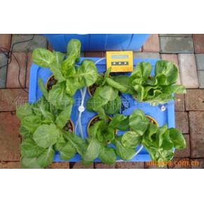 箱式 水培蔬菜設備 無土栽培 家用水培設備 水培