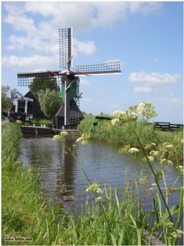 【古典荷兰风车】_青州美亚景观能源有限公司_顺企网