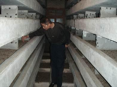 中國江蘇聯盟土元養殖基地