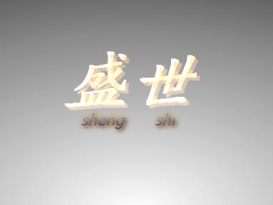 上海盛世機電有限公司