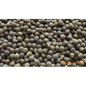 黃秋葵種子(又稱秋葵,咖啡豆,補腎菜) 的保健蔬菜