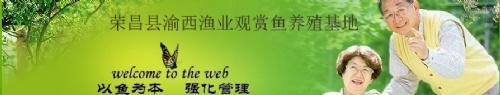 荣昌县渝西渔业观赏鱼养殖基地
