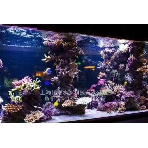 仿真海底世界造景 水族箱维护 鱼缸改造