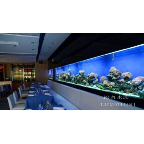 海底主题餐厅水族箱工程 大型玻璃鲨鱼景观鱼缸