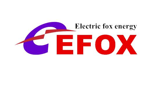 廣州電狐能源科技發展有限公司