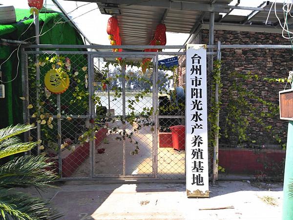 溫州市鹿城區豐門街道麗波百貨網店