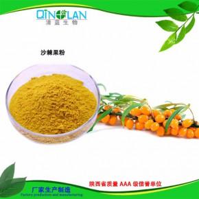 沙棘提取物 优质沙棘果粉 固体饮料食品添加