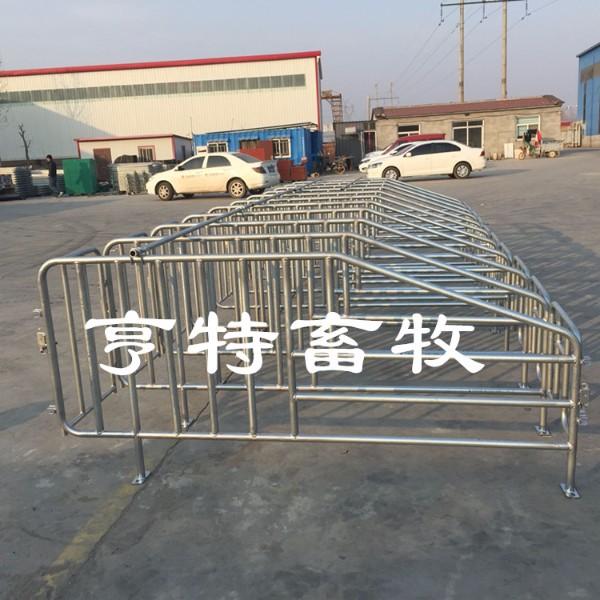 新型自动化养猪定位栏设备 10头猪占地尺寸