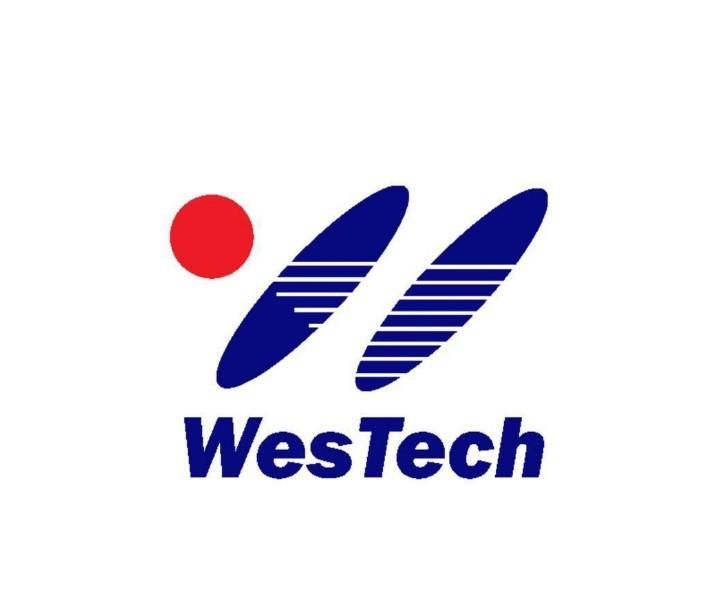 維思特工程技術(武漢)有限公司