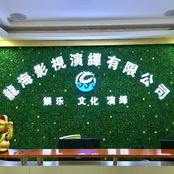 龙海文化传播有限公司