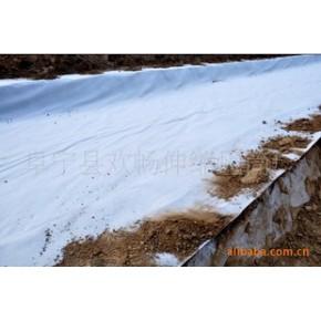 土工膜 土工摸 二布一膜 一布一抹 防水板 EVA防水板 土工膜