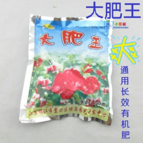 特价花肥 养花必备(大肥王)园艺迷你植物盆景盆栽花卉 专用肥料