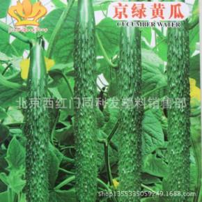 蔬菜种子批发 小菜园系列专用种子 京绿黄瓜种子 约30粒