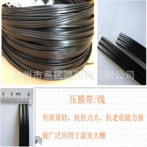 园艺资材供应进口优质压膜线(温室大棚配件) 热销产品