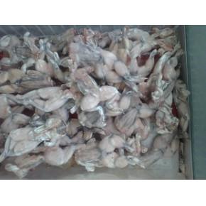 水产品 美国青蛙 广东 食用