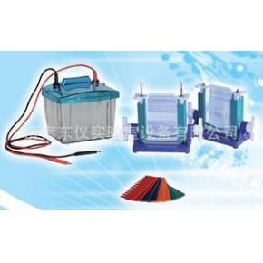 电泳仪 北京P4蛋白垂直电泳仪 价格