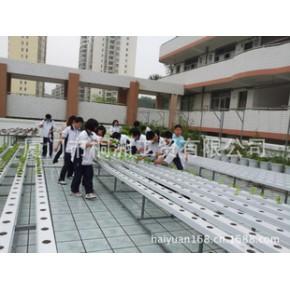 学校生物劳动实践课无土栽培屋顶庭院露台阳台蔬菜种植教育基地