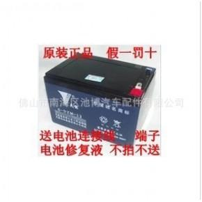天能48V12A電動車蓄電池
