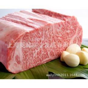 日本 和牛 5A 雪花牛肉 A5