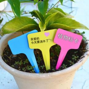 塑料标签园艺标牌 T型植物标卡 标签牌 标签吊牌