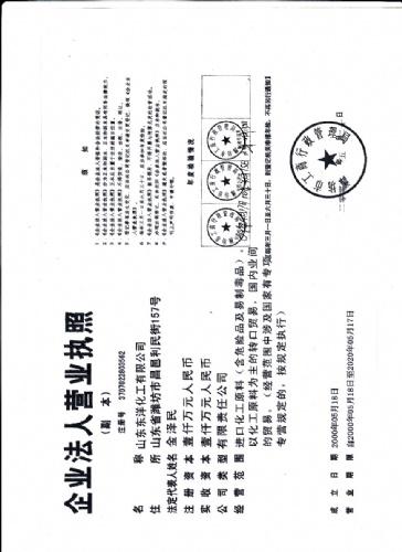 山东东洋化工有限公司