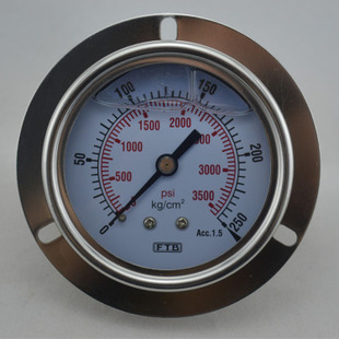 DT60 压力表0-3500psi 轴向带边压力表 气压表 常用压力表