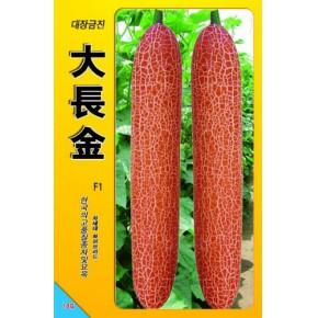 韩国大长今-老黄瓜种子