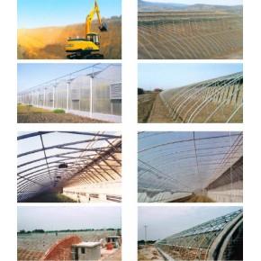 專業建設蔬菜溫室大棚,壽光綠隆
