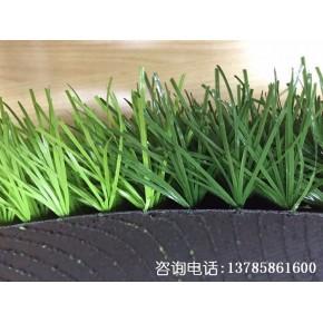 5CM仿真球场人造草皮施工 人造草坪价格