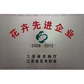 苏州植物租赁苏州盆栽租赁苏州绿植租赁