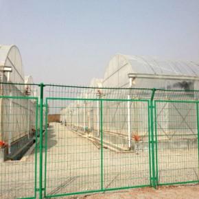 四川双边丝护栏网价格 双边丝护栏网厂家批发