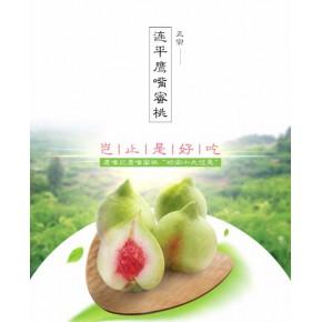 惠州果顆科技有限公司入駐匯農商城