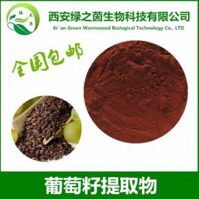葡萄籽提取物 原花青素