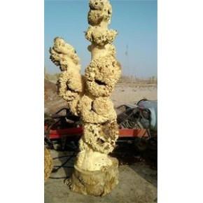 根雕去皮高压清洗机迈极高压水枪旋转喷专用打树皮