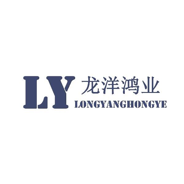 西安龙洋鸿业网络科技有限公司