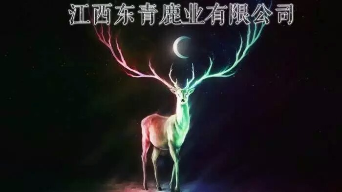 江西省东青鹿业有限公司