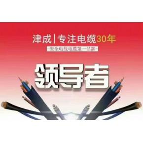 津成电缆焊把线R-YH16-25-35电焊机专用