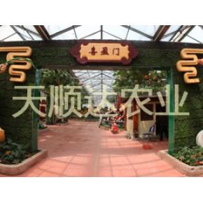 天顺达景观设计,生态园区规划,生态餐厅