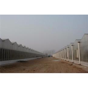 圆拱型PC阳光板温室大棚建设厂家