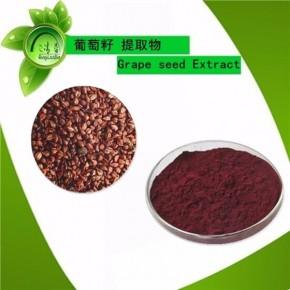 天然抗氧化葡萄籽提取物 原花青素 美容保健原料